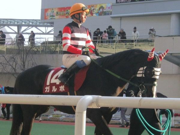 131223_ガルボと岩田騎手.JPG